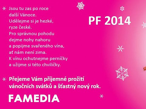 Succesful year 2014 wishes the whole team of Famedia!